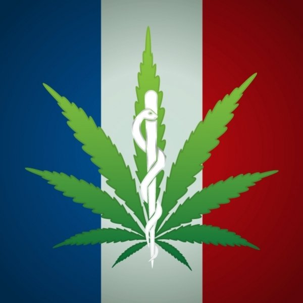cannabis légal en france